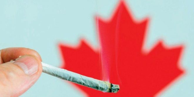 Marijuana legalization: Canada turns a new leaf